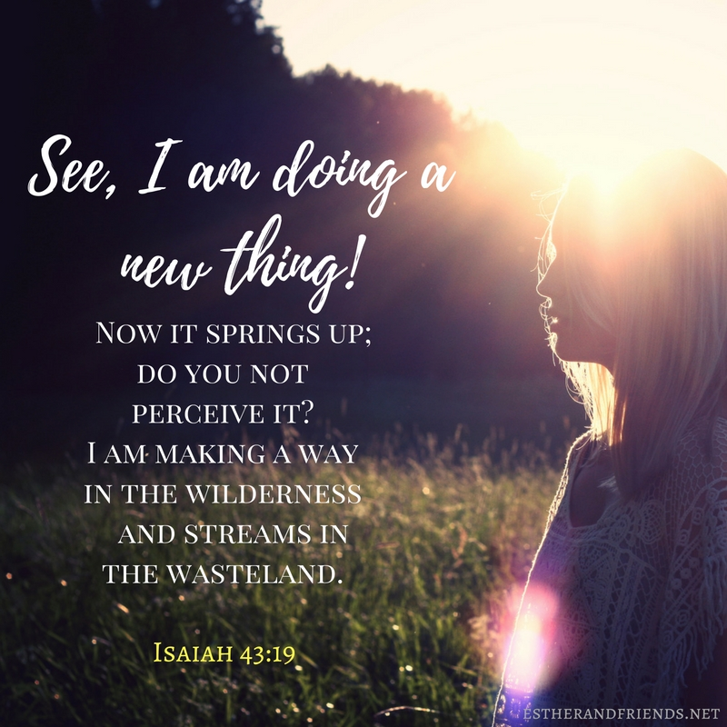 see-i-am-doing-a-new-thing-now-it-springs-up-do-you-not-perceive-it-i-am-making-a-way-in-the-wilderness-and-streams-in-the-wasteland